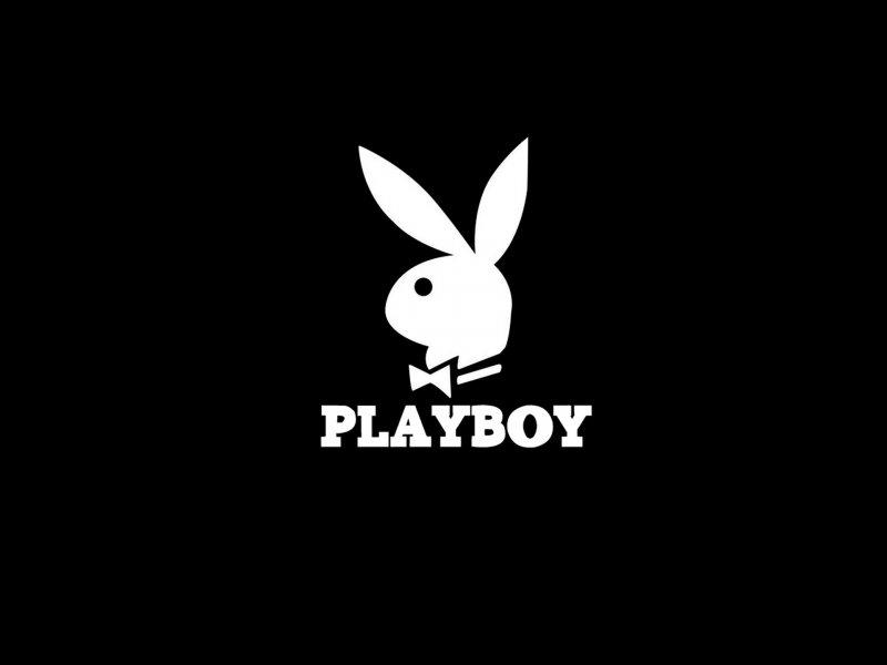lecciones-conejo-playboy