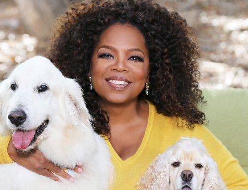 Oprah Winfrey: Con Trabajo y Sacrificio Puedes Llegar a tu Objetivo