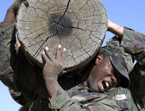 ¿Qué relación existe entre un marine estadounidense y tu fuerza de ventas?