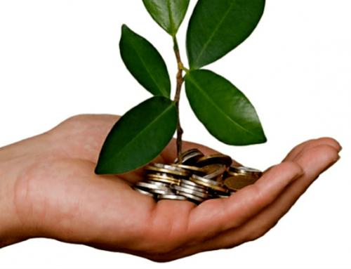 Cuatro consejos para alcanzar sustentabilidad económica